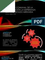20190810, FJM - Presentación Los Consejos Comunales