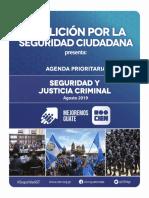 CIEN Propuestas Seguridad Ciudadana Agosto 2019 1
