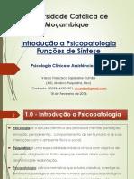 Psicopatologia das Funções de Síntese