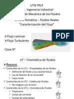 caracterizacion del flujo. fluidos reales