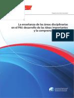 Areas Disciplinarias en El PAI