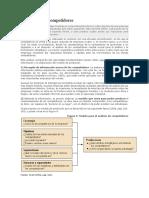 Análisis de los competidores.docx