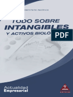vdocuments.mx_lv2012-intangibles (1).pdf