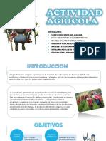 exposicion agricola.pptx