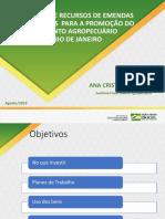 Apresentação - Ana Cristina Reis - MAPA.pdf
