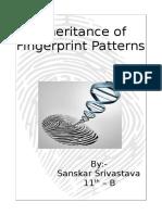 Inheritance of Fingerprint Patterns