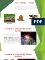 Extincion Masiva, Triasico – Jurasico