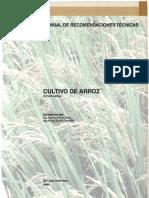 Cultivo de Arroz Tinoco 2009 Min Edited