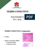 Clase Tejidos Conectivos 2019