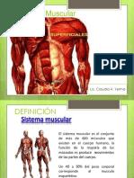 8 Sistema Muscular