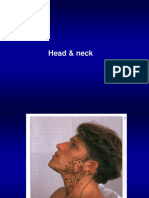 2_Head