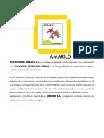 1- Manual Amailo V