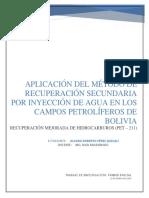 Inyección de Agua_recuperación Mejorada (Pet-211)_trabajo 1er Parcial