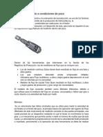 Registros_de_gasto_a_condiciones_de_pozo.docx