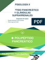 Polipeptido y Glandula Supra