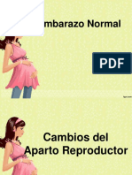 embarazonormal romy- powerpoint.pptx
