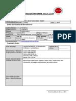 FORMULARIO DE INFORME - BECAS IDH (1).docx