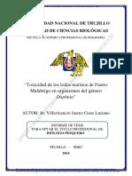 Villavicencio Juarez Cesar Luciano.pdf