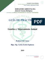 Guia de Practicas_genetica y Mejoramiento Animal_carlos Scotto Espinoza_2019