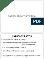 Carbohidratos y Fibra