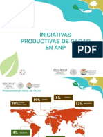Presentación Cacao Bolivia