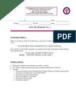 Guía de Trabajo No. 1