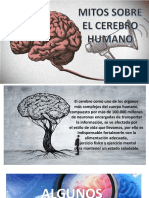 Mitos Sobre El Cerebro Humano