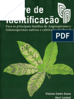 Chave de Identificao Souza Lorenzi 2014