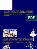 Neurofisiologia Del Movimiento