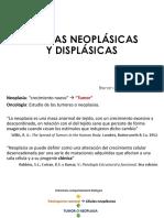 Célula Displásica y Neoplásica