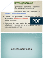 Neurofisiología.ppt