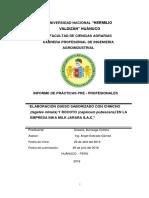 INFORME DE PRACTICA  DE QUESO CON QUINCHO Y ROCOTO SUSAN.docx