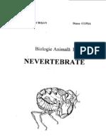 Biologie Animala 1 (Nevertebrate)