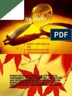 HR Audit Ppt