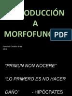 Introduccion a la Morfologia