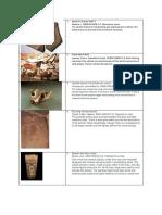 AP Art History Flashcards 250