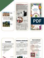 Patrimoni cultural del Peru