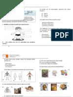 GUIA REPASO PRUEBA ciencias 1º.doc