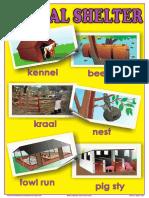 Animal Shelter.pdf