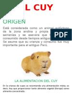 EL CUY