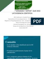 Marihuana Yerbita Natural o Toxica, Que Dice La Evidencia Científica