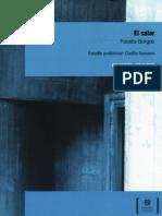 El Salar - Fausto Burgos - Colección los raros.pdf