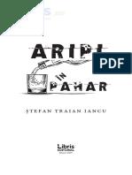 Aripi in Pahar - Stefan Traian Iancu