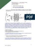 Pau Biologia Estruc Celulares Soluciones 2016
