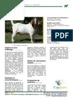 Boer-français.pdf