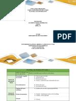 TAREA 1_Plantilla de Informacionn.docx