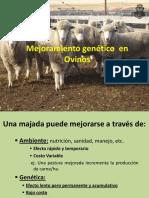 Mejoramiento-genético-Ovinos-2018-RM-FCA-UNC.pdf