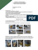 391718657-Desarrollo-Actividad-Obtencion-de-Extracto-de-Mandarina.pdf