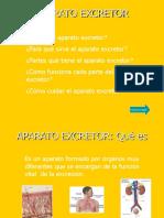 APARATO EXCRETOR.pps