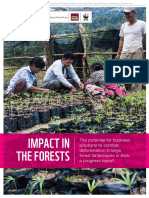 Impact the forests